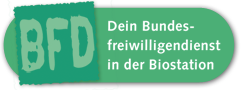 Bundesfreiwilligendienst in der Biostation